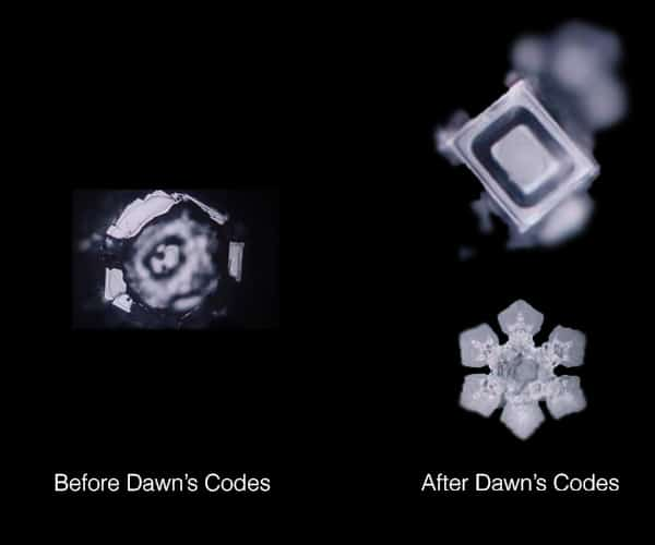 Personal codes for recoding dna for wealth dawn clark water good x2 bad1 malvernweather Image collections